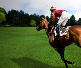 Racehorse rider Stock Photo