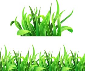 Realistic grass illustration vector material 06