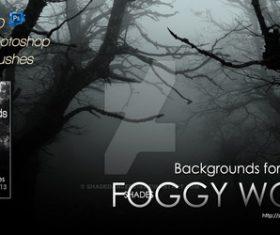 Shades Foggy Woods Photoshop Brushes