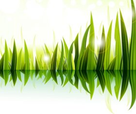 Sunlight with green grass vector material