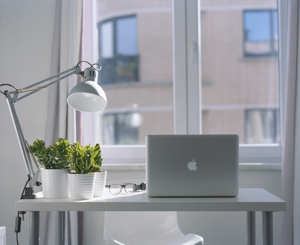 Tidy workplace with modern equipment and fresh tre Stock Photo