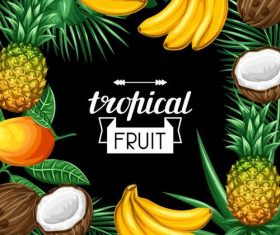 Tropical fruits frame with black background vector