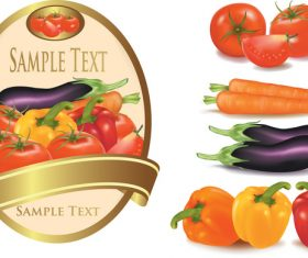 Vegetable with labels vector material