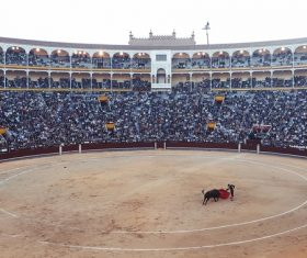 Watch the bullfighting audience Stock Photo 01
