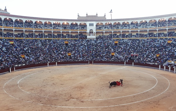 Watch the bullfighting audience Stock Photo 01