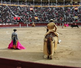 Watch the bullfighting audience Stock Photo 03