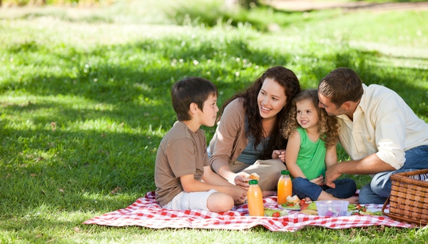 Weekend Family Picnic Stock Photo 02