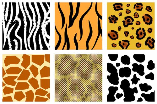Wild animal skin pattern vector set 10