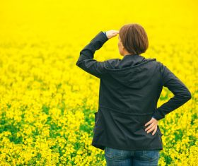 Woman looking at rape flowers Stock Photo