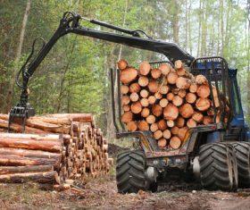 Wood loader Stock Photo 02