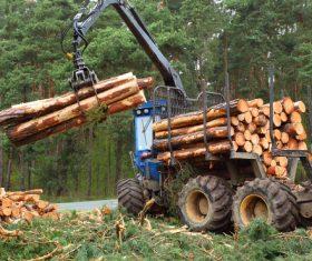 Wood loader Stock Photo 03