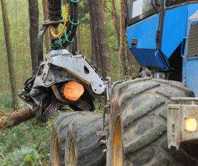 Wood loader Stock Photo 04