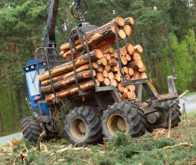 Wood loader Stock Photo 05