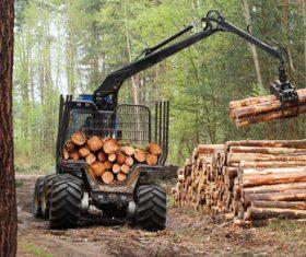 Wood loader Stock Photo 06