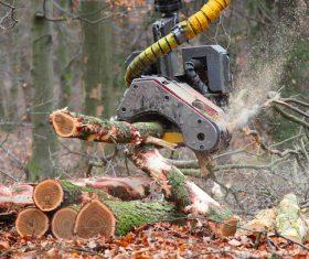 Wood loader Stock Photo 07