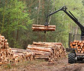 Wood loader Stock Photo 08