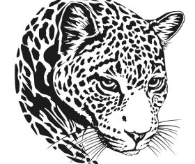 jaguar head illustration vector