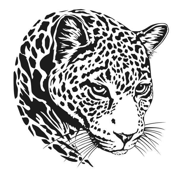 jaguar head illustration vector