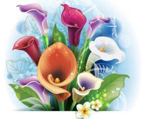 Bouquet of Calla lilies vector