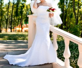 Bride in white wedding dress standing on the steps Stock Photo