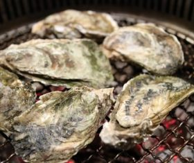 Charcoal grilled oysters Stock Photo 02