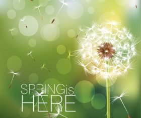 Dandelion with spring background vector 01