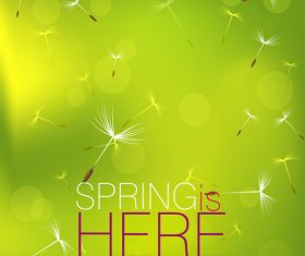 Dandelion with spring background vector 02