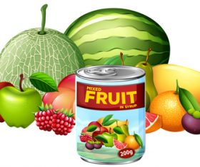 Differt fruits canned vector