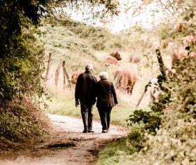 Elderly couple walking on country road Stock Photo