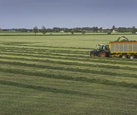 Farmland harvesting Stock Photo