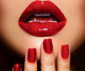 Female lips closeup Stock Photo 08
