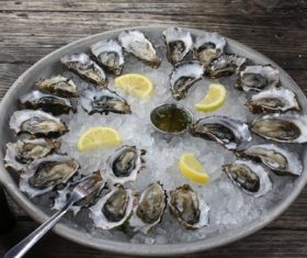 Frozen oysters and lemon Stock Photo 03