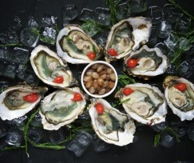 Frozen oysters and lemon Stock Photo 04