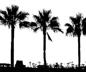 Hand drawn palm trees photoshop brushes