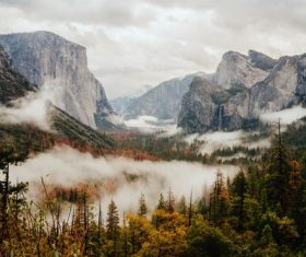Natural misty forest mountain landscape Stock Photo