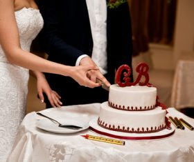 Newlyweds cut cake Stock Photo