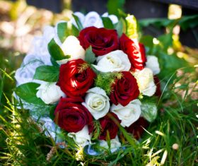 Red and white bouquet Stock Photo