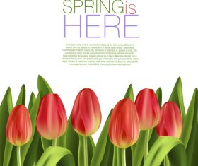 Spring flower with white background art vector 02