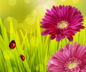 Spring fresh flower and blurs background vector 03