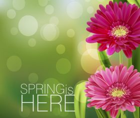 Spring fresh flower and blurs background vector 04