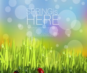 Spring fresh flower and blurs background vector 06