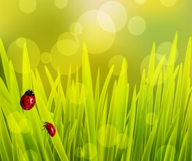 Spring fresh flower and blurs background vector 07