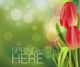 Spring tulip and blurs background vector 01