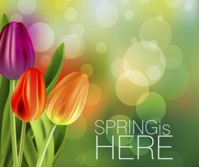 Spring tulip and blurs background vector 02