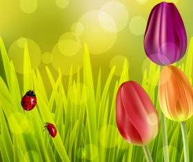 Spring tulip and blurs background vector 04