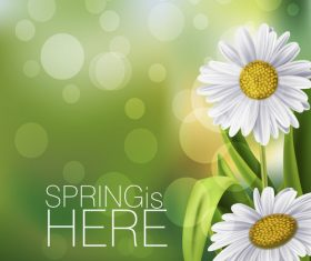 Spring white flower and blurs background vector 01