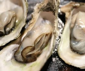 Steamed oyster Stock Photo 01