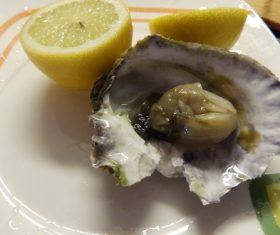 Steamed oysters and lemon Stock Photo 02