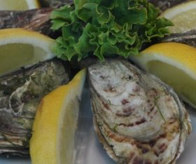 Steamed oysters and lemon Stock Photo 03