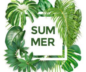 Summer leaves frame vector